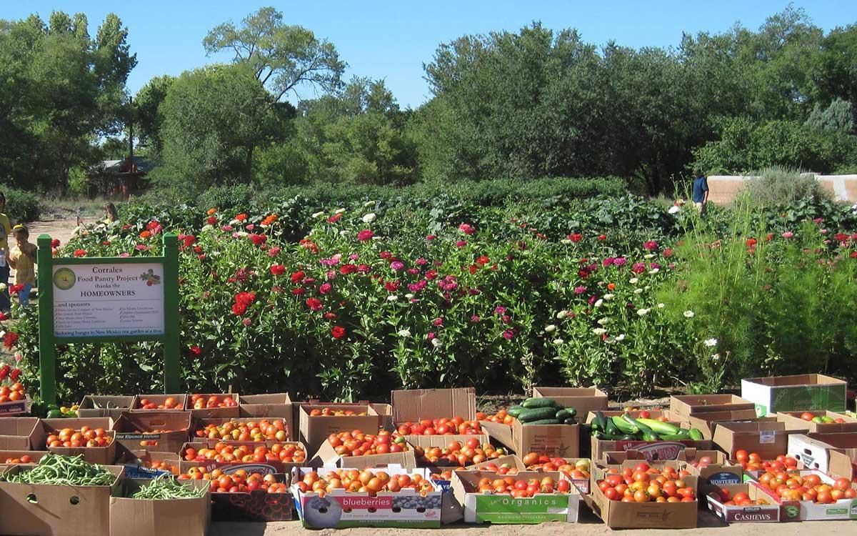 2010 gardens
