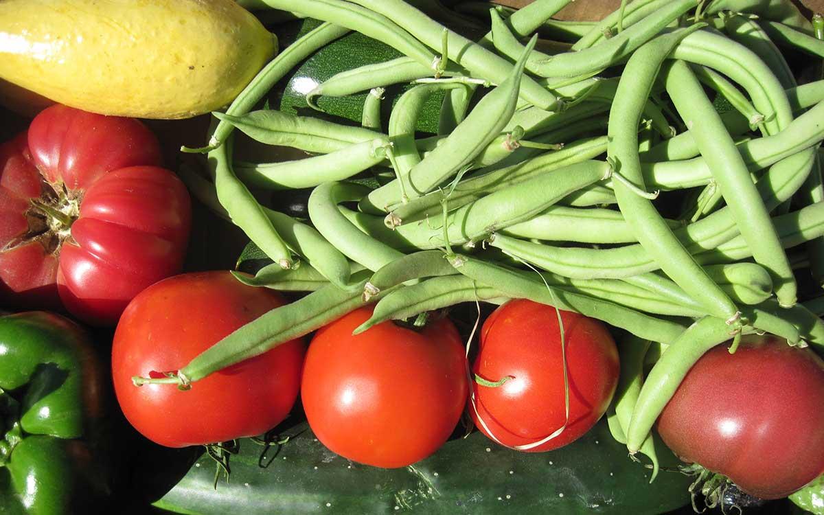 Donating produce