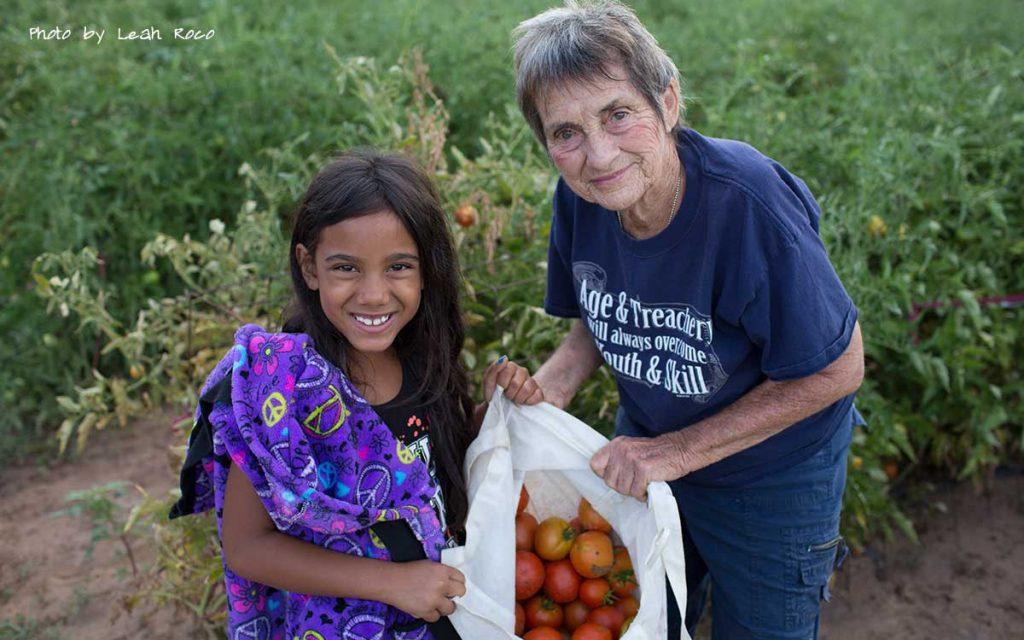 Donate tomatoes